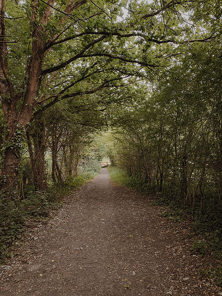 titchfield gardeners club path.jpg