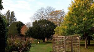 haslar garden