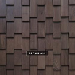Scale - Brown Ash