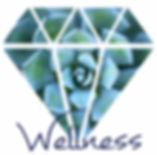 Wellness Spa Member.jpg