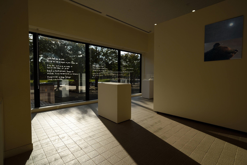 installation view at the rounge of the museum  /  Four stories of a valley and See out of sight