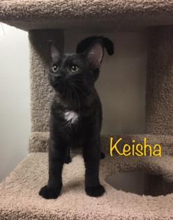 Keisha1