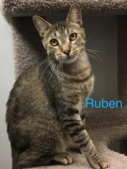Ruben1