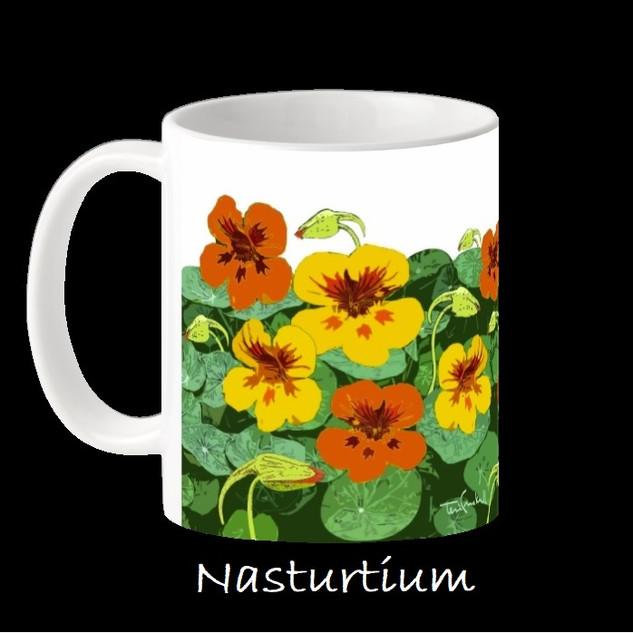 NASTURTIUM