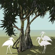 PANDANUS with EGRETS