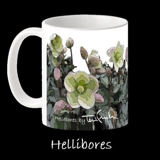 HELLIBORES