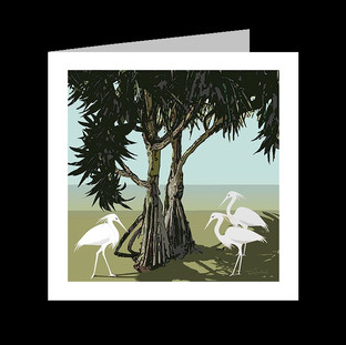 EGRETS in  THE SHADE
