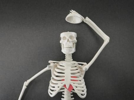 Mais pourquoi un squelette pour coacher des musiciens ?
