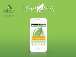CARAÏBE - PAWOKA : Quand la pharmacopée antillaise se digitalise.