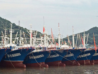 Pêche chinoise : les états indépendants du Pacifique se font piller leurs ressources
