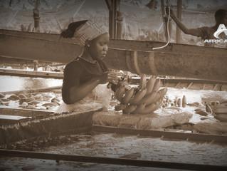 """DOCUMENTAIRE - Ces """"travailleurs immigrés africains"""" venus en Guyane et aux Antilles françaises à pa"""