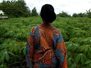 AGRICULTURE : La Stratégie de Bill Gates pour mettre fin aux fruits et céréales naturelles en Afriqu