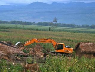 AFRIQUE - SÉCURITÉ ALIMENTAIRE : L'Afrique doit se doter d'une gouvernance foncière pour protéger se