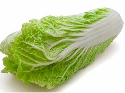 Cabbage - Napa W