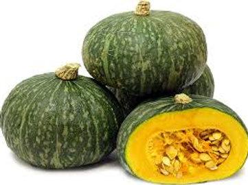Pumpkin Kombucha W
