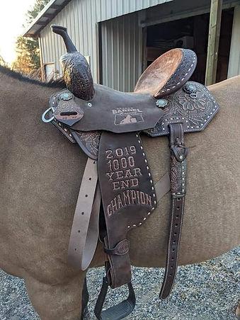 trophy saddle.jpg