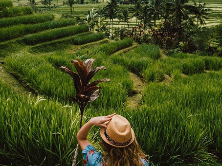 What I Learned From My Journey in Bali: For My Brother.