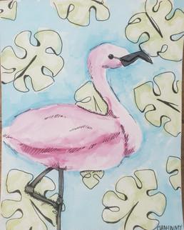 Clare Counts Flamingo.jpg