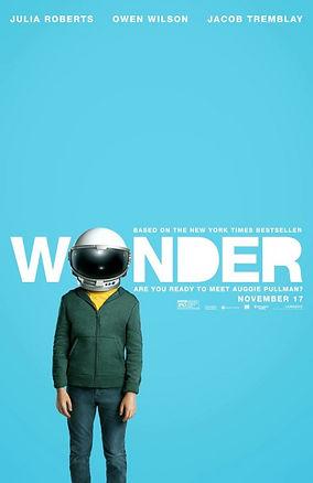 wonder 2.jpg