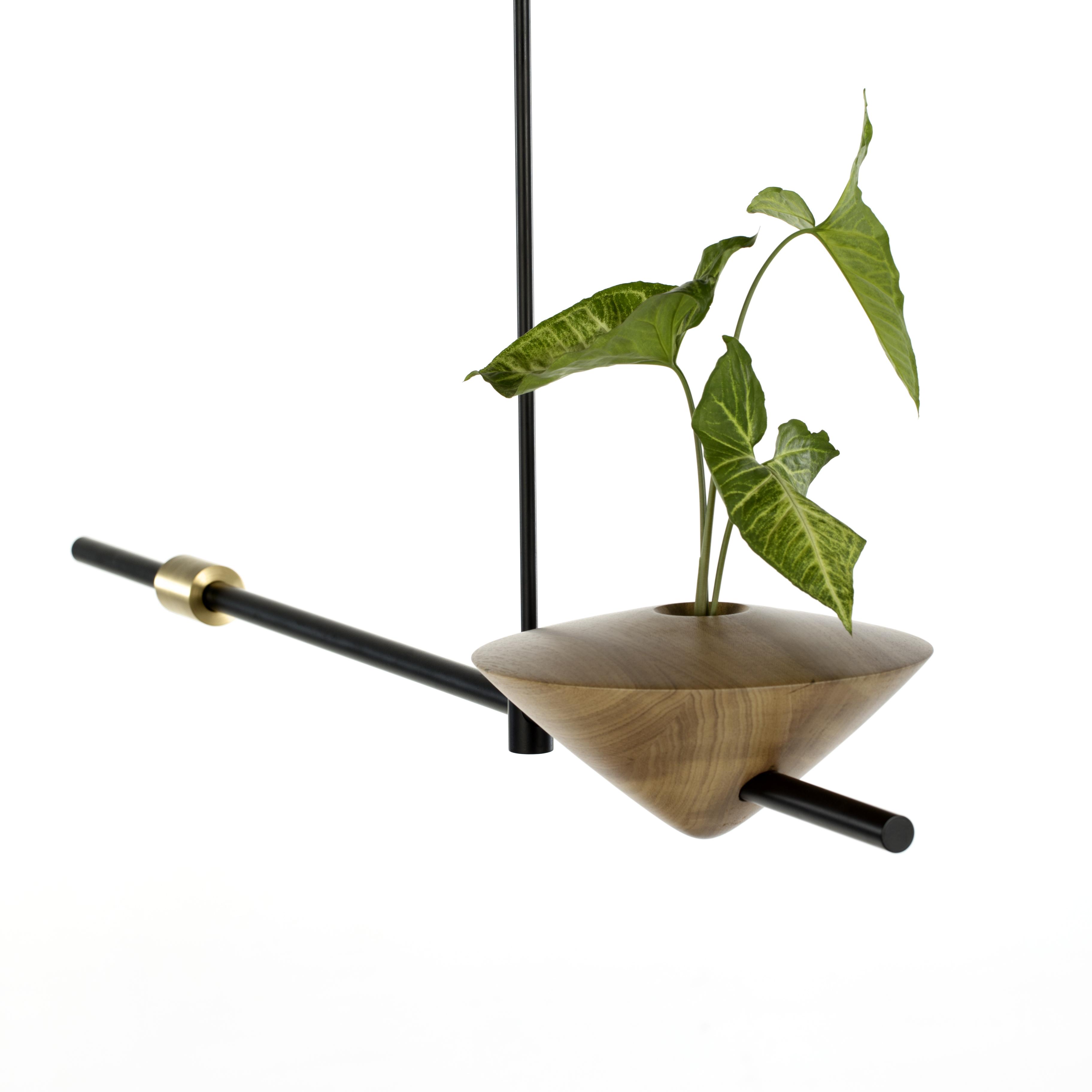 Vaso Equilíbrio