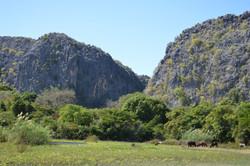 Les Tsingys