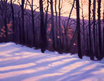 Winter Trees Aglow