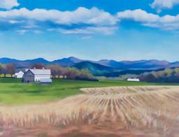 Spring Fields II