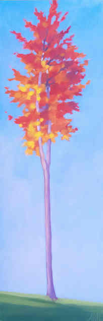 Blue Sky Red Maple