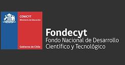 logo fondecyt.png
