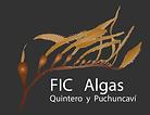 logo fic2.png