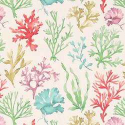 Sea Wonders Zinc.jpg