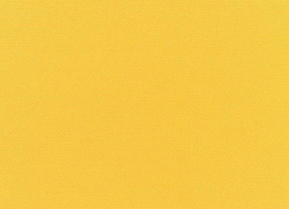 Canvas Sunflower
