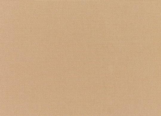 Canvas Camel