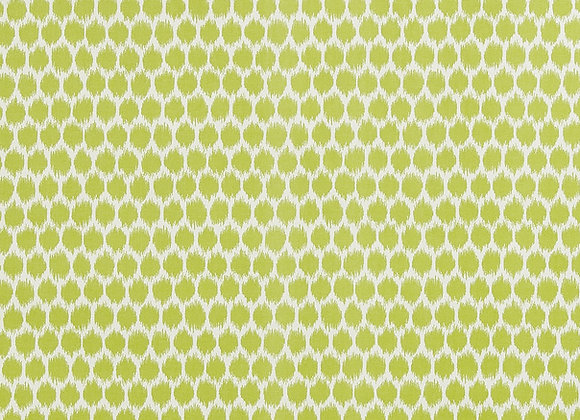 Seeing Spots Wasabi