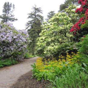 Glorious Gardens of Argyll