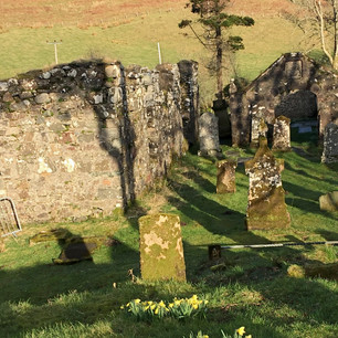 Kilbride in the sun with daffodils