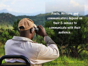 Using our 5 senses are awesome benefits for writers, poets