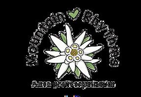 mtnrhy_logo.png