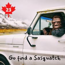 #23. Go Find a Sasquatch