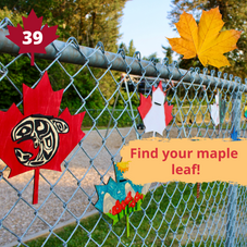 #39. Find your Maple Leaf