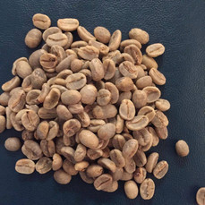 Bariguna Coffee