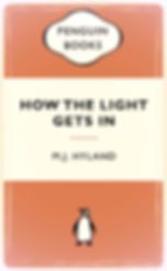 MJ Hyland, How The Light Gets In