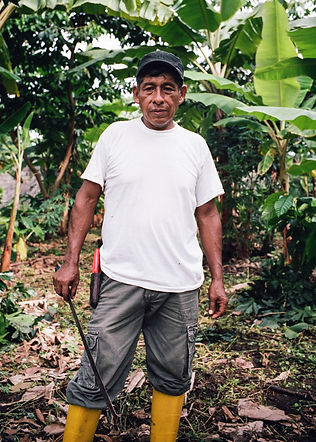 chocolate, fair trade food, fair trade photography, Cacao, Alter Eco, documentary photography, ecuador