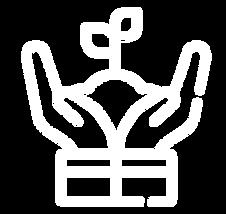 icono-11.png