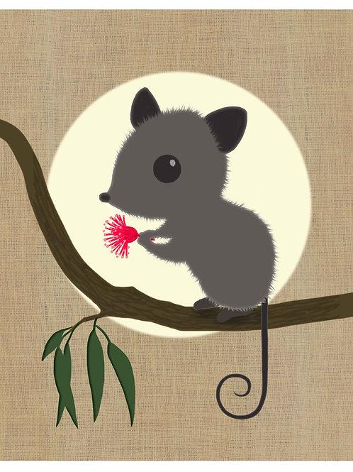 Possum on hessian background