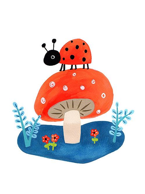 Ladybird on a Mushroom