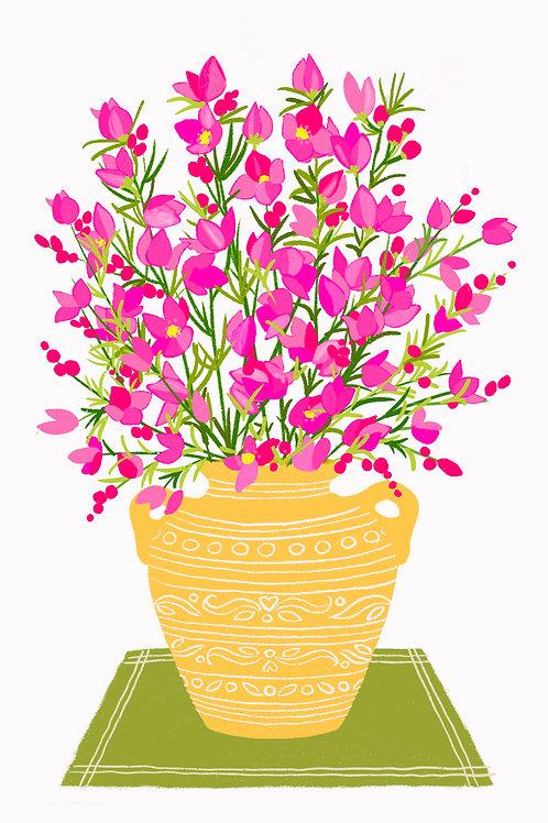 Pink Boronia in a Yellow Vase on white