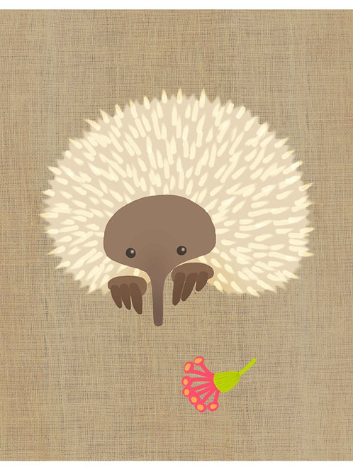 Echidna on hessian background