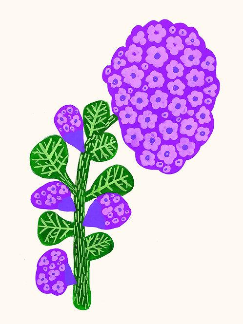 Big Flowers number 12