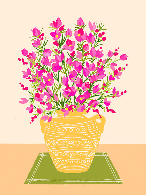 Pink Boronia in a Yellow Vase